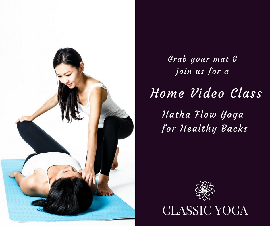 Hatha_Flow_Yoga_Healthy_Backs